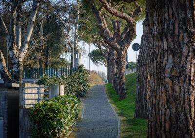 Cotignola, La memoria nel paesaggio, Memoria, Parco, Parco urbano, argine Senio, Distributore non automatico di coraggio